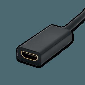 DisplayPort naar HDMI Adapter - HDMI Aansluiting (Vrouwelijk)